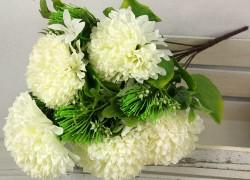 Kytica chryzantéma x10  JX191198-CR