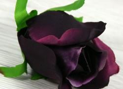 Ruža vencová  JX1910-51