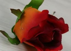 Ruža vencová  JX1910-58
