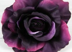 Ruža vencová  XYL001-51